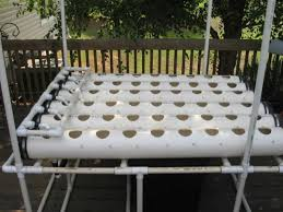 homemade hydroponic system