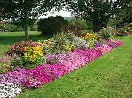 small rectangular flower bed