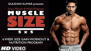 size gain workout program overview