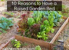 10 benefits of raised garden beds and