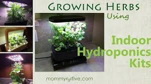 16 best indoor hydroponic grow systems