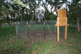 Wild Wonderings D I Y Game Feeder Corral Trap For Wild Pigs