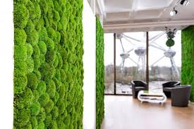 interior green wall systems preserved