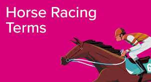 Horse Racing Terms Guide To Horse Racing