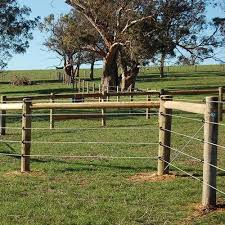 Electrobraid Electric Horse Fence Ramm Horse Fencing Stalls Horse Fencing Livestock Fence Pasture Fencing