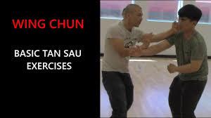 Wing Chun Basic: Tan Sau exercises - Adam Chan Kung Fu Report - YouTube
