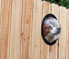 Pet Peek Dog Window Petagadget