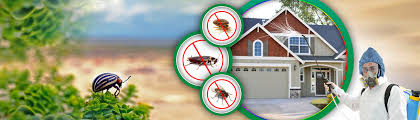 Pest Control Melbourne: Health Awareness Chapter - Know The Importance Of Pest  Control Services In Winter