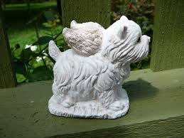 small angel dog westie terrier 3 25