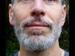 pre grey beard remove white hairs