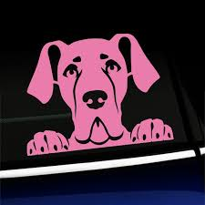 Peeking Great Dane Vinyl Decal Choose Color Pink Walmart Com Walmart Com