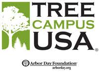 Tree Campus re-certified