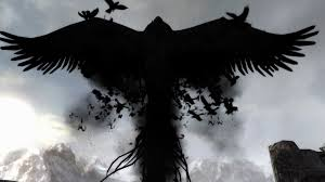 65 crow hd wallpapers on wallpaperplay