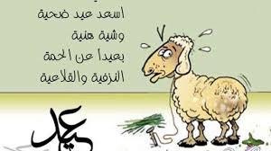 صور مضحكة لكبش العيد