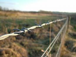 Barbed Wire Fence Barbed Wire Fencing Manufacturer Dongfu