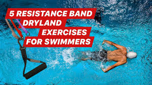 dryland exercises for swimmers myswimpro