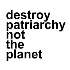Destroy Patriarchy Not The Planet 6 Vinyl Car Decal