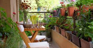 gardening products for small spaces