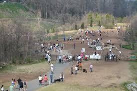 Off Leash Dog Parks In Atlanta Ga Bringfido