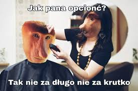 janusze u fryzjera