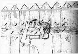 Medical Sanjay Eat Smartly Stay Healthy Nails In The Fence Moral Story