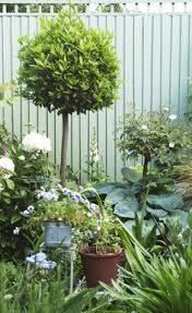 Image Result For Sage Green Fences Green Fence Garden Fence Garden Fencing