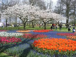حديقة كيوكينهوف المرسال