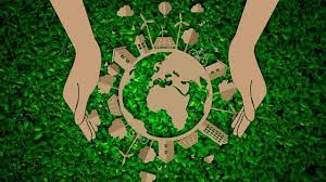 ramas de la ecología y qué estudian
