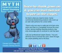 pet odor pet urine carpet cleaning