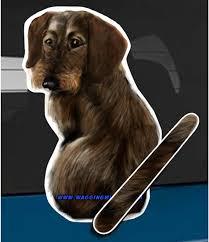 Amazon Com Wagging Wipers Wire Hair Dachshund Dog Car Rear Wiper Sticker Decal Automotive
