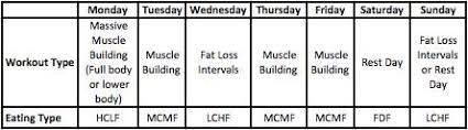 t plan for lean muscle gain and fat
