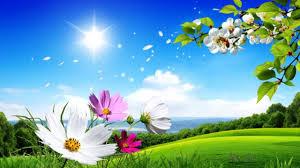 Buon Equinozio di Primavera 2020! Ecco i VIDEO più belli da ...