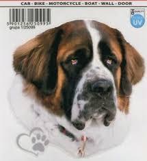 Saint Bernard Dog Sticker Decal Realistic Looking Wall Art Car Decal Vinyl Art Ebay