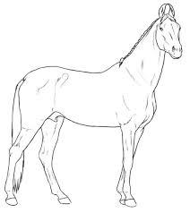 Kleurplaten En Zo Kleurplaten Van Paarden Rassen