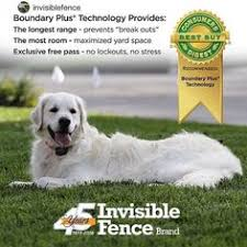 80 Invisible Fence Brand Ideas Invisible Fence Fence Dogs