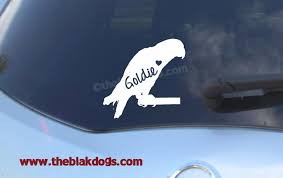 Bird Silhouette Vinyl Sticker Personalized Car Decal Parrot Conure Parakeet African Grey Amazon Blakdogs Vinyl Designs