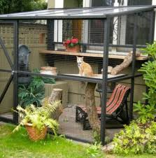 cat enclosures to keep your kitty safe