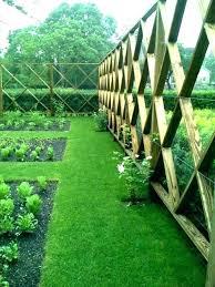deer proof garden enchanting fence