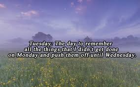 happy tuesday quotes funny tuesday morning images and sayings