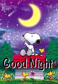 snoopy good night snoopy pictures