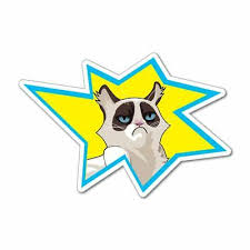 Graphics Decals Automotive Grumpy Cat Tailgaters They Suck Meme Funny Angry Cat Vinyl Decal Sticker Adrp Fournitures Fr