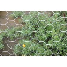 China Factory Cheap Hot Pallet Coil Nails Hexagonal Wire Mesh Huaxin Manufacturer And Supplier Huaxin