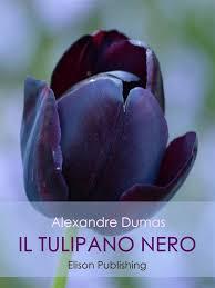 Il tulipano nero eBook by Alexandre Dumas - 9788869631450