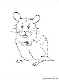 Hamster Kleurplaat Gratis Kleurplaten