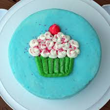 wilton cake decorating cles at