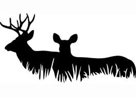 Car Truck Decal Deer Family Hunting Prints Window Stickers 6x12 Vinyl Decal Stickers Deer Family Deer