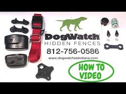 Dogwatch How To Replace Collar Strap Using Contact Posts Dogwatch Hidden Fence Youtube