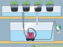 hydroponic systems oho