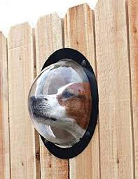 Pet Dog Fence Window Durable Acrylic Dome Pet Dog Fence Peek Window For Cats Dogs Prevent Fence Jumping Reduce Barking Digging Including All Necessary Bolts Nuts 1pack Amazon Co Uk Pet