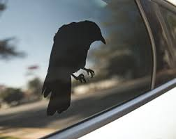 Raven Car Decal Etsy